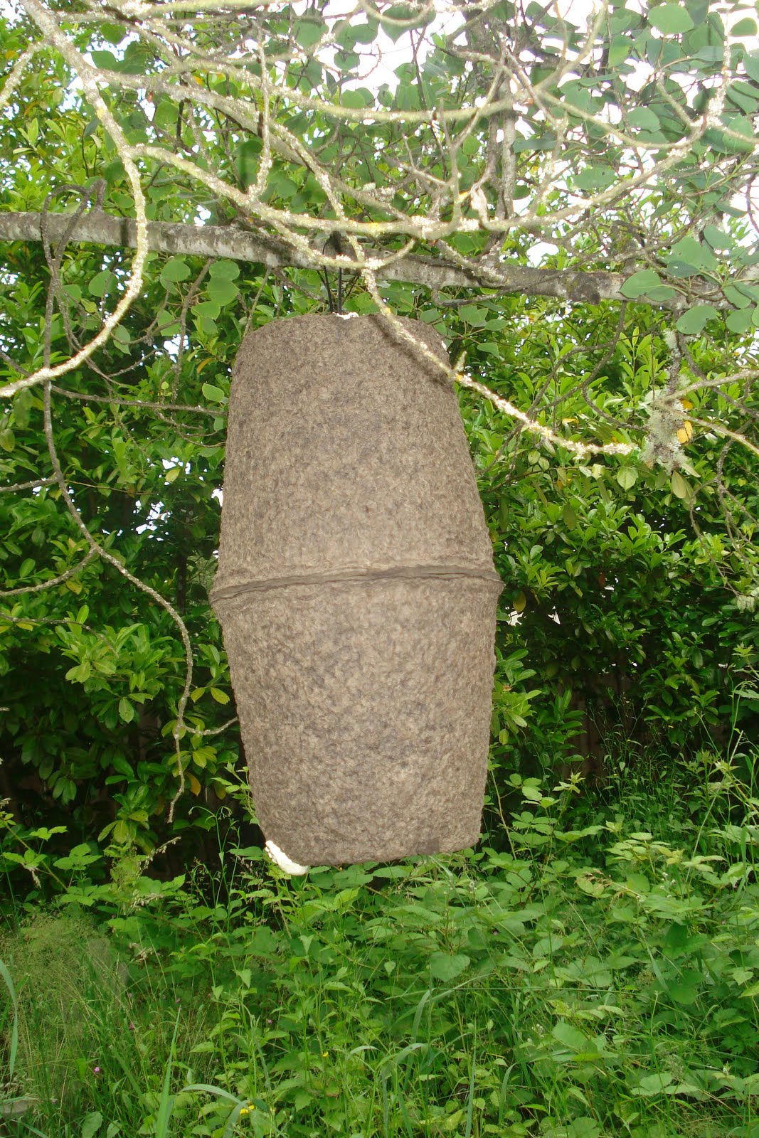 A Whole Nother Bee Blog Swarm Trap Bait Hive