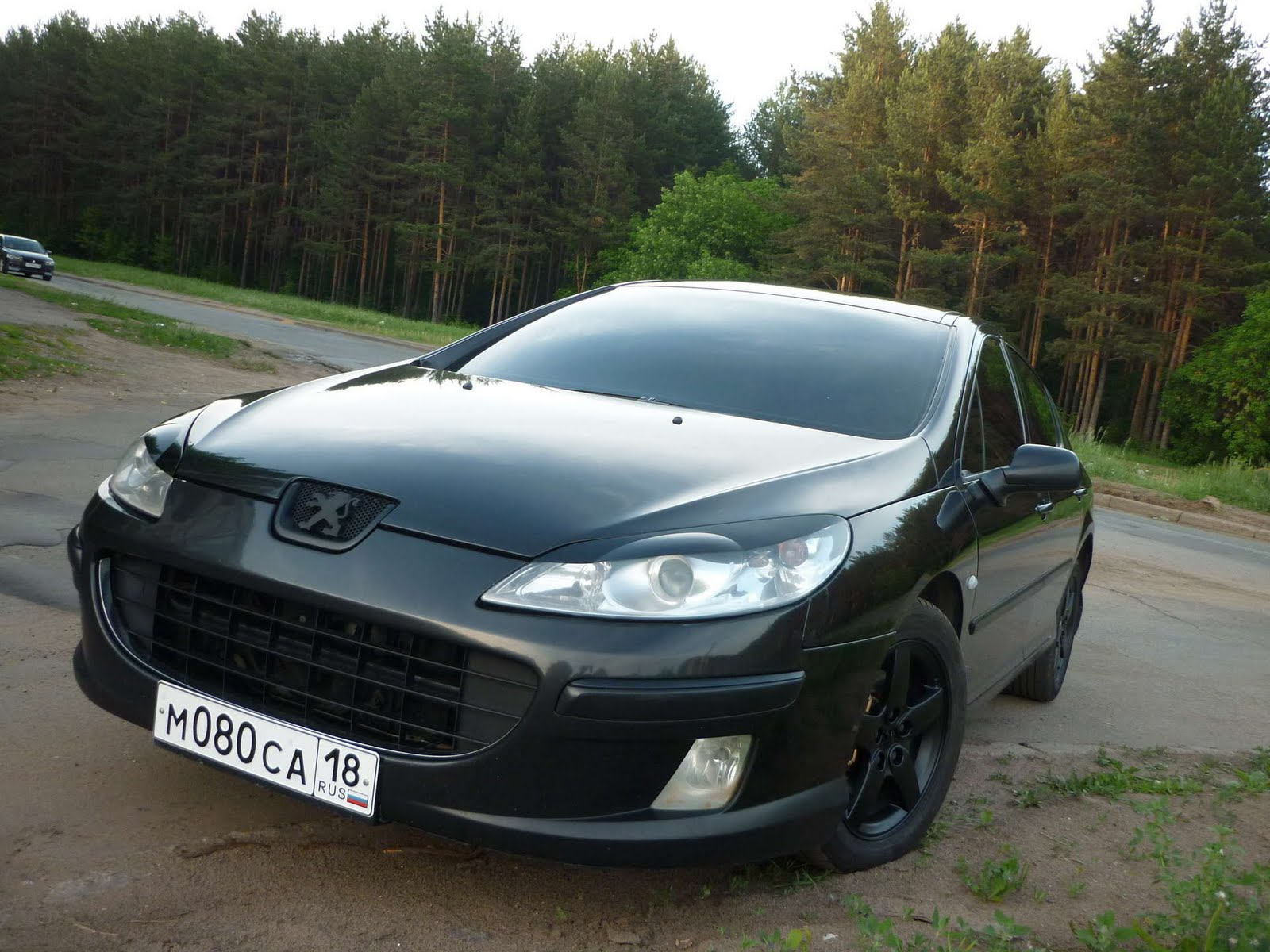 Car Vehicle: Peugeot 407 Tuning