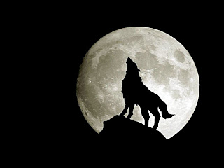 Full Moon and Wolf with Black Background
