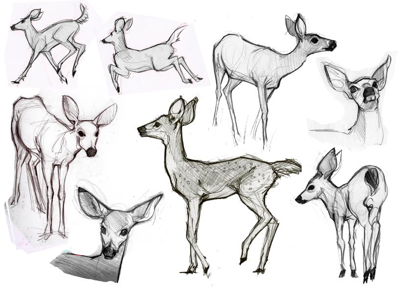 Alison's Art Blog: Animal Sketches