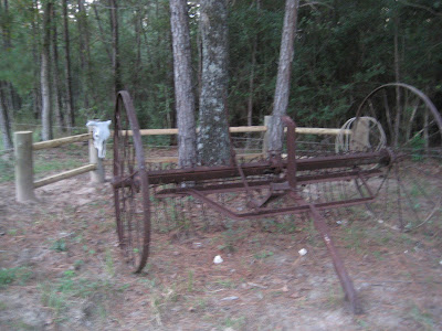 Imseeingraggedies Antique Hay Rake