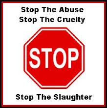 stop the abuse sign