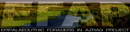 Epipaleolithic Foragers In Azraq Project (EFAP)