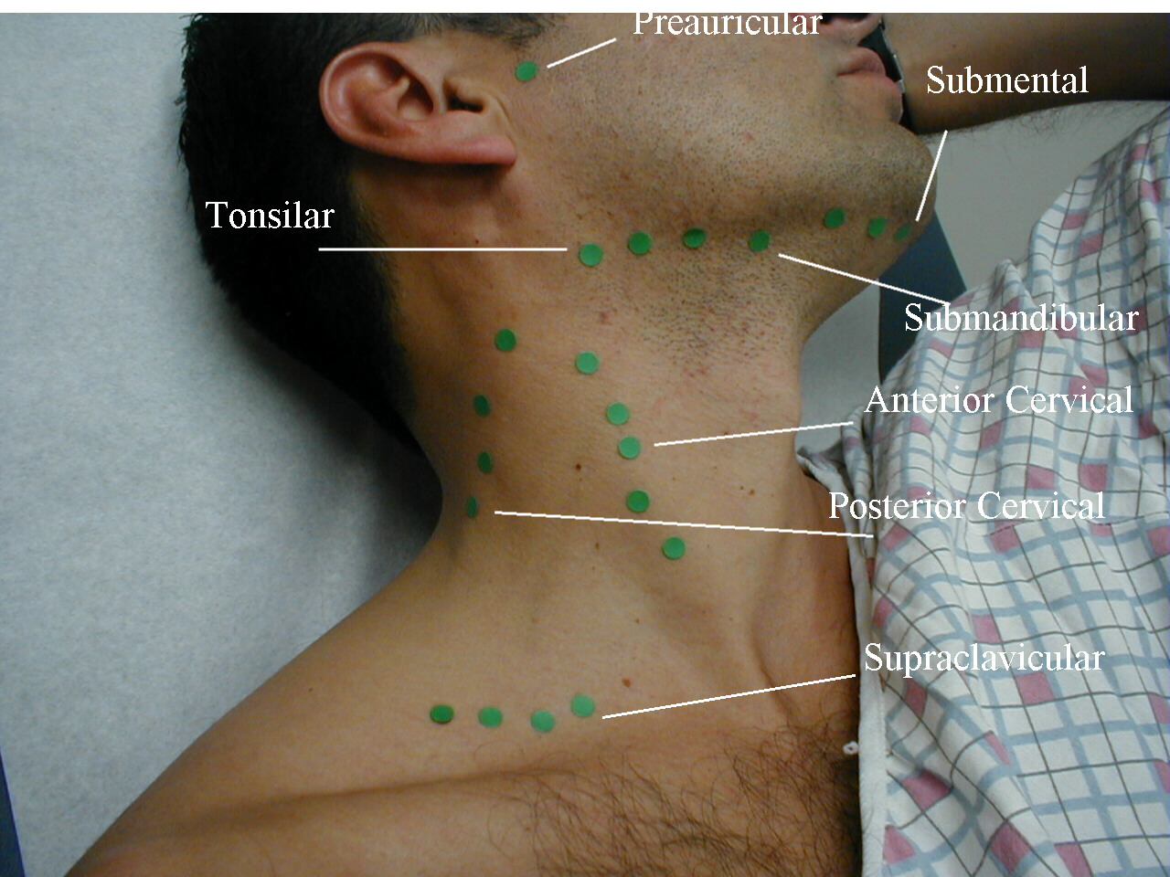 Postural Assessment of the Neck