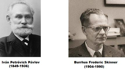 pavlov along with skinner