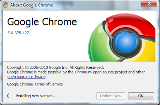 Update to Google Chrome 6
