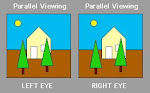 Viewing 3-D Images