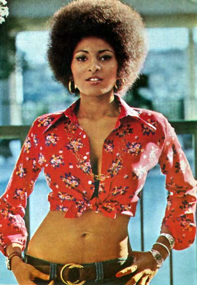 Image result for hot pam grier