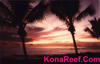 Your Condo at Kona Reef Resort - KonaReef.com