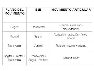 Planos y ejes anatomicos