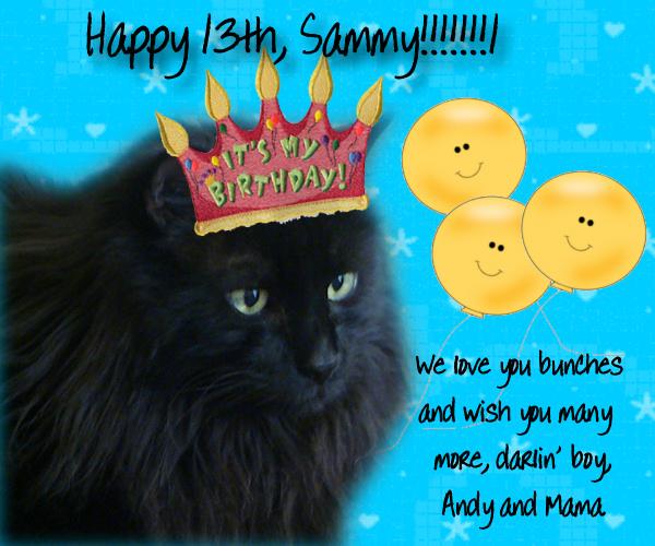SASS .... Shelly, Sierra, Polli & Boston: Happy 13th