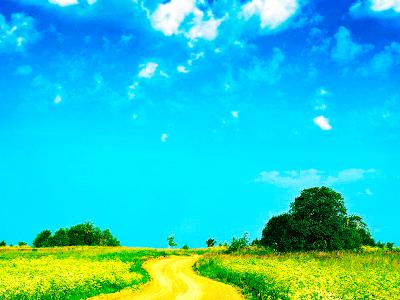 Обработка фото при помощи Уровней в Фотошоп