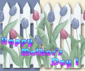 _mothers-day-tulips image