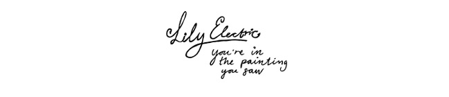 Lily Electric Blog