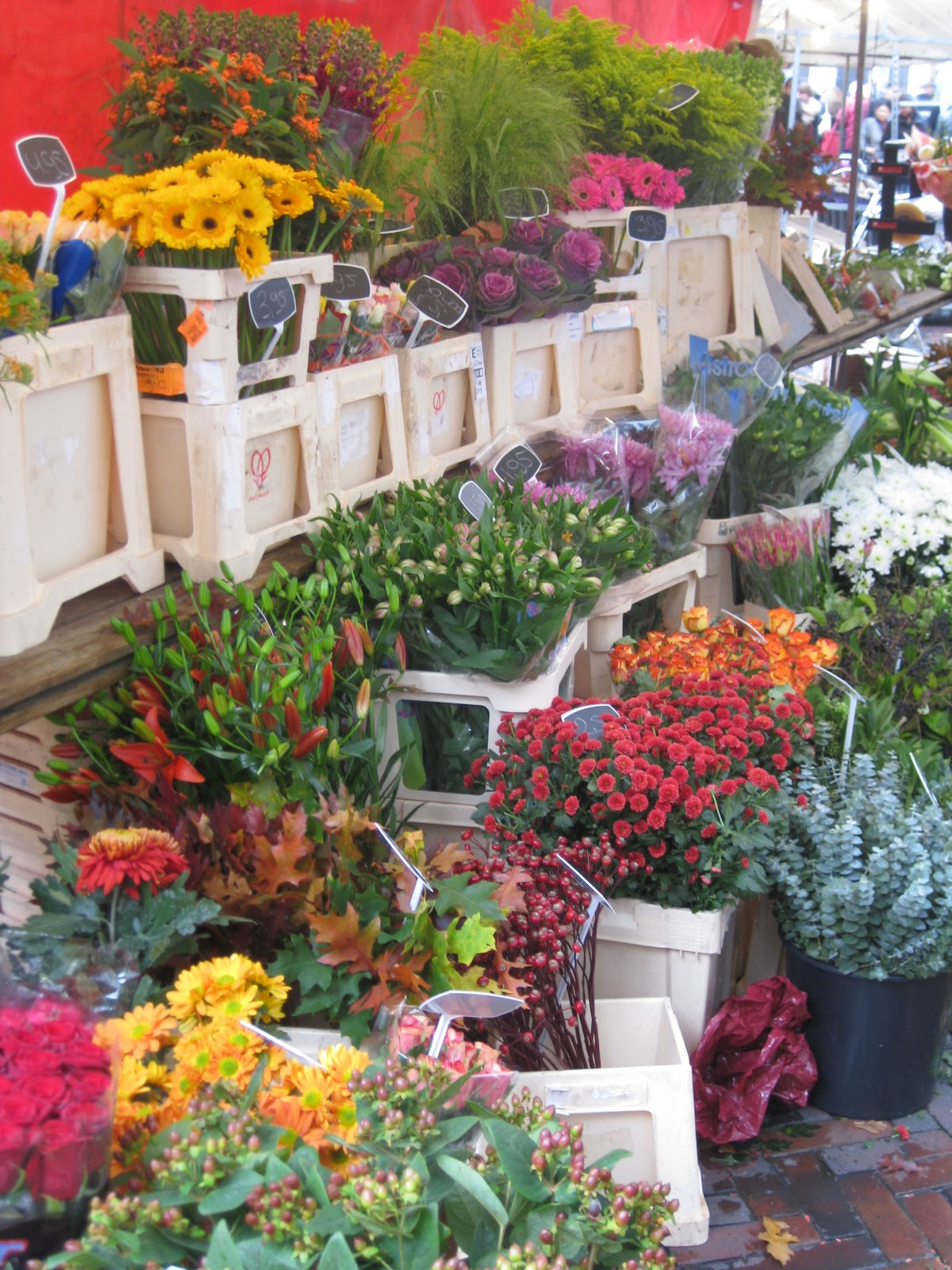 Flower market in Utrecht