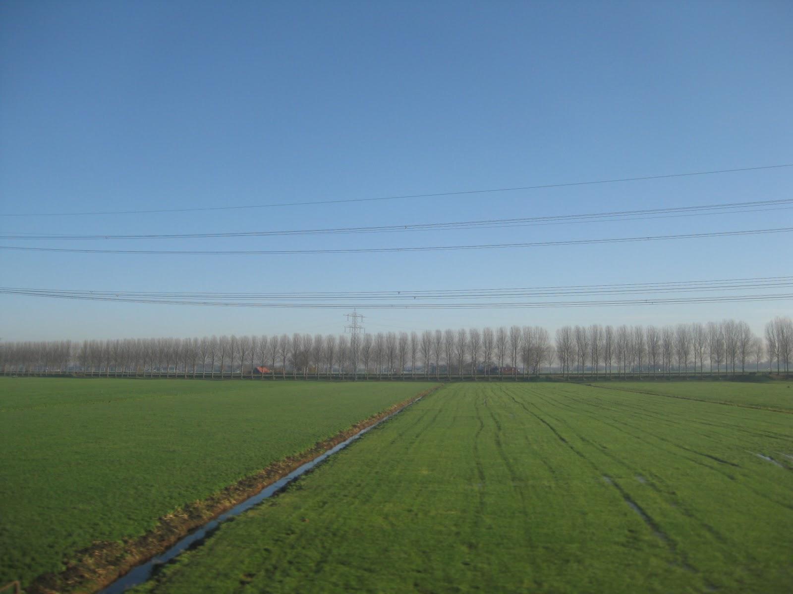 The Netherland landscape