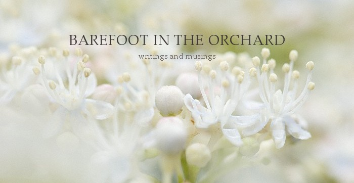barefoot in the orchard