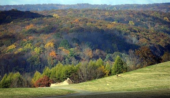 Manuel S Views Fall In Elk County Pennsylvania