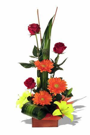 Tropical Flower Arrangement   Bondiz FlowerShop
