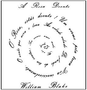 diário da lulu: para a rosa