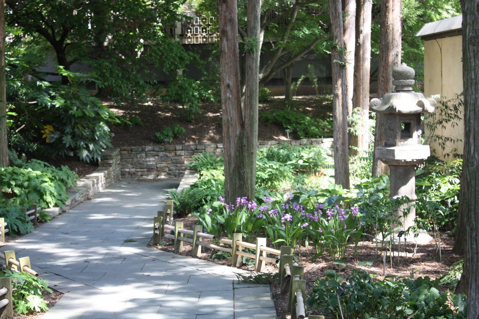 U S National Arboretum Washington D C