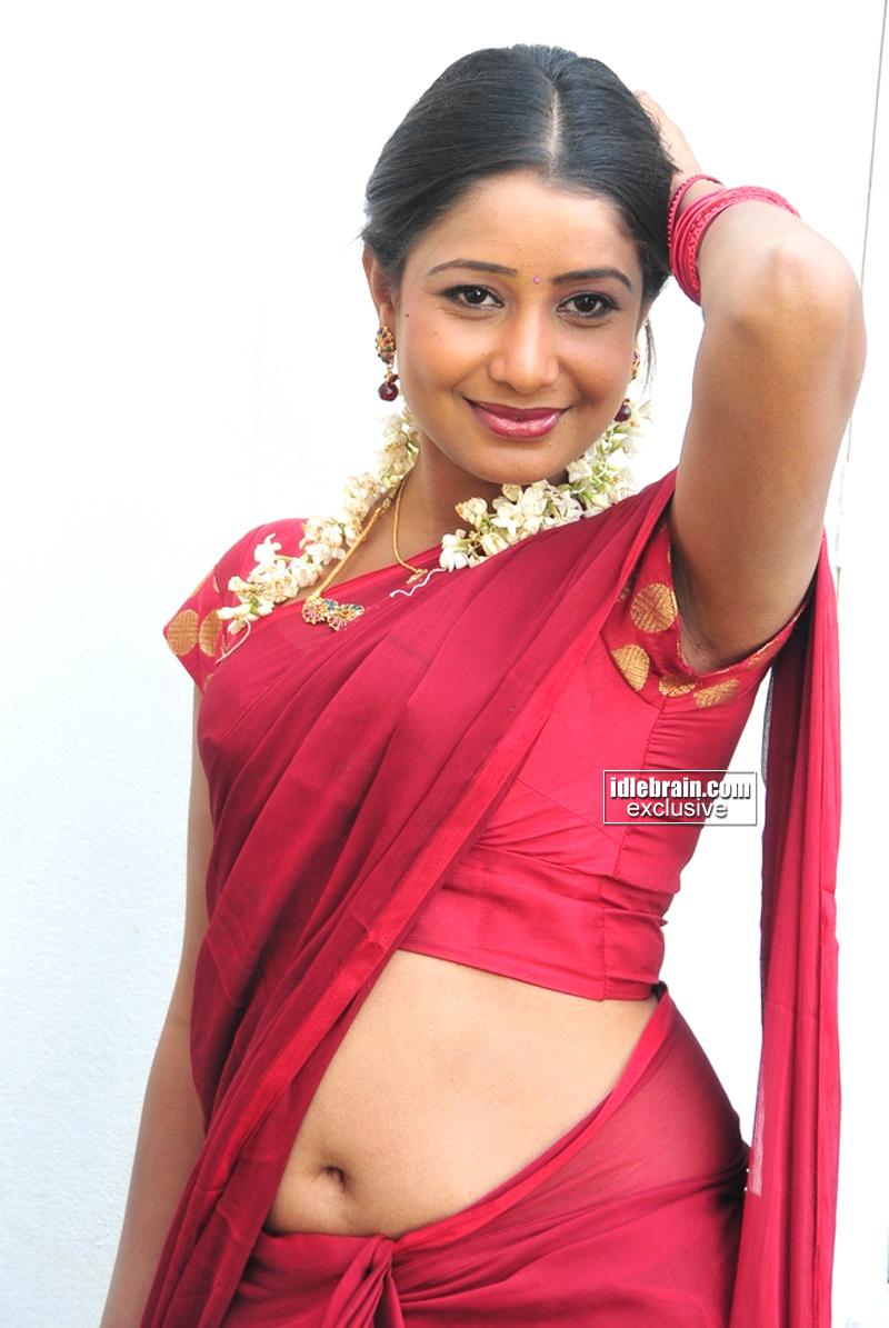 indian saree masala