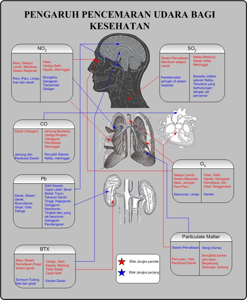 7 Bahaya Logam Berat Bagi Kesehatan Tubuh Manusia
