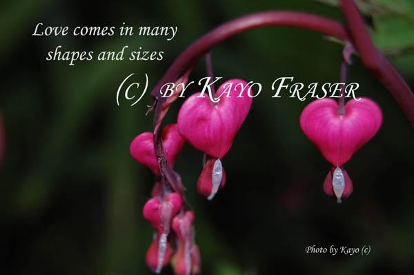 flower love