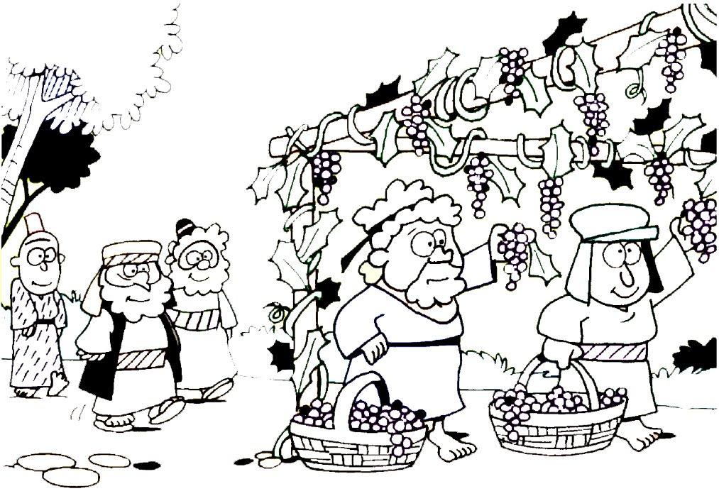 de werkers in de wijngaard