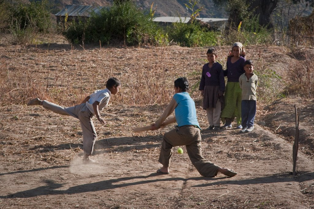 Cricket in the Indian Himalaya