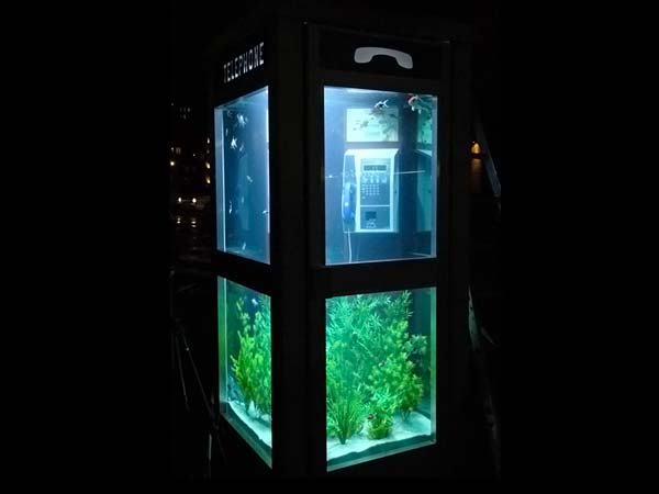 Telephone booth Aquarium: 6pics