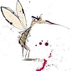 Dica para se livrar dos mosquitos