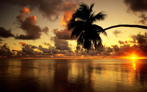 Beautiful Beach Sunset