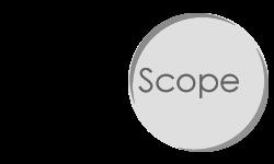 VNPL Business Scope: Managing Business Risk in Singapore