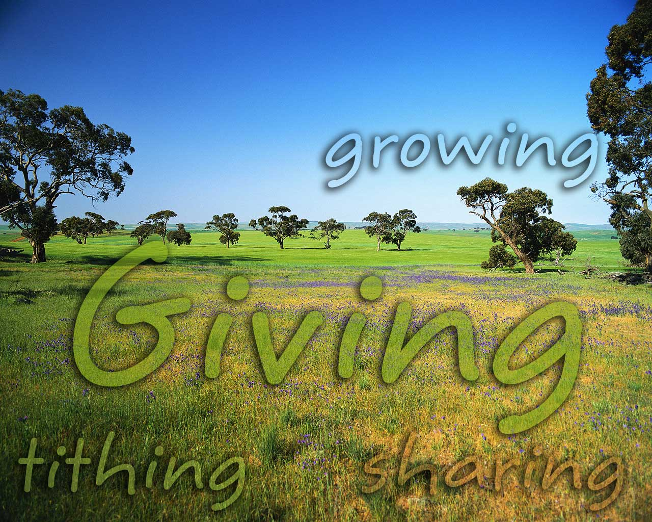 Joy In Giving: Q'ued Up!: Joy Is In The Giving
