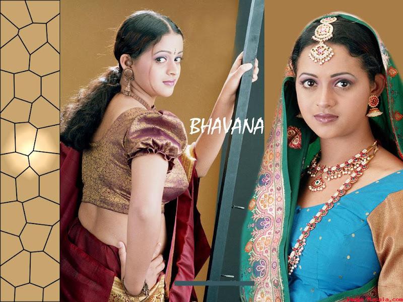 South Indian Cinema Actress: Actress Side View 1