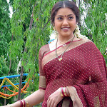 Meena In Saree