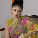 Haripriya Sexy In Saree