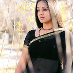 Jyothika In Transparent Saree