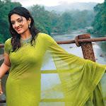 Navel And Boobs Show Of Desi Actress In Wet Transparent Saree