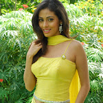 Tamil Actress Sada Hot Neval Show