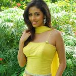 Tamil Actress Sada Hot Neval Show
