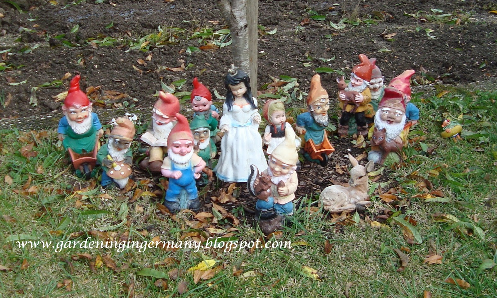 Gnome In Garden: Gardening In Mannheim, Germany: A Gnome's Tale Of