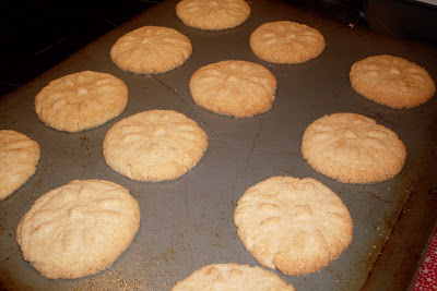 Cinnamon Flats, a delicious cinnamon infused cookie.