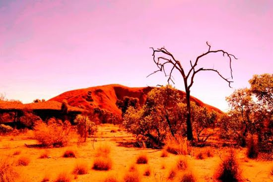 uluru nature photography