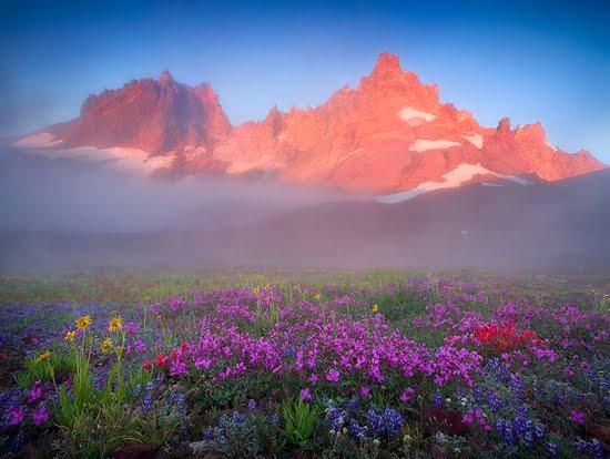 Mist Mountain Colors