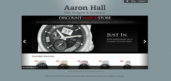 Aaron Hall web design
