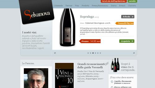 Vini Selvanova web design