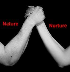 Nature Vs Nurture Deutsch