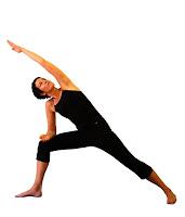 sun yoga trainee teachers november 2008